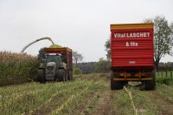 ensilage-de-mais-2012-vital-laschet-fils-2-046-vert.jpg